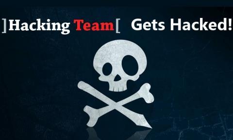hacking-team.jpg