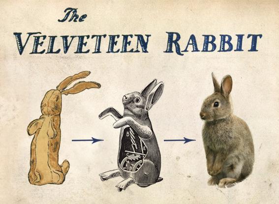 velveteen_rabbit.jpg
