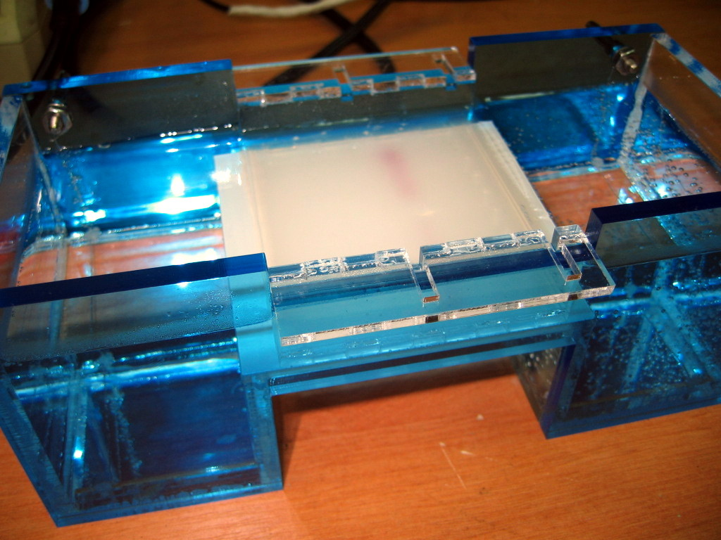 The first test electrophoresis run, no nucleic acid, just diy cresol red loading...