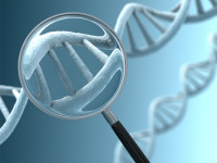 A magnifying glass focussing on a section of a DNA strand.  Very high resolution...
